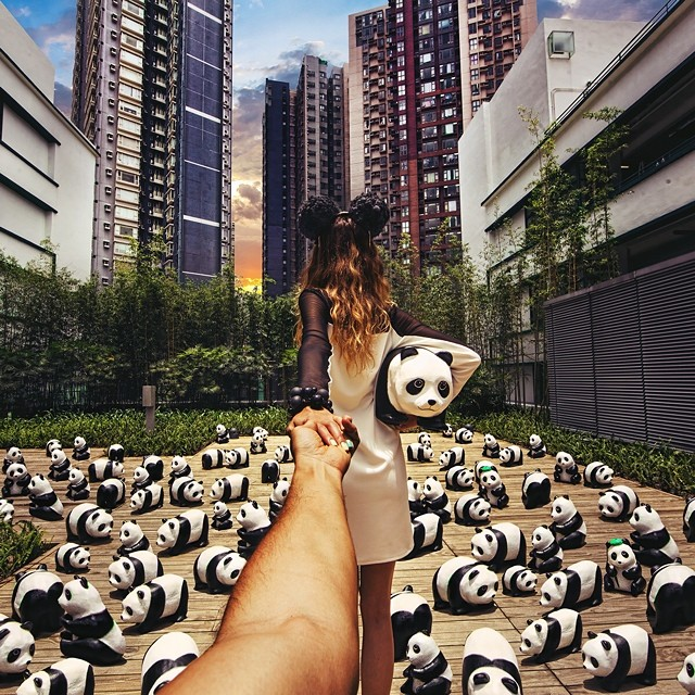 1-1600-pandat-Hong-Kong