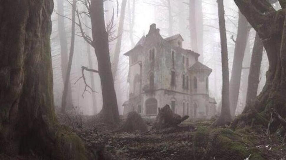 Hüljatud-maja-metsas